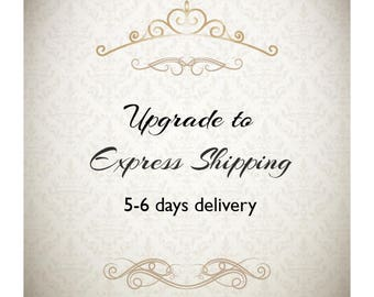 Express shipping to USA