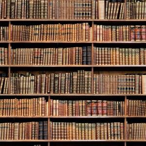 "BOOKSHELF BOOK Fabric Curtain Upholstery Cotton Material / digital print fabric / book shelf effect 55"" wide"