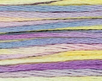 4123 Celebration - Weeks Dye Works 6 Strand Floss