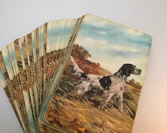 Brittany Spaniel Vintage Playing Card Deck, Hunting Dog Stardust Plastic Coated Cards, Original Cards, Not Reproductions, Made in USA