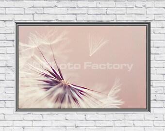 Instant Digital Download,Digital Photo Download,Dandelion,Dandelion Canvas Print,Dandelion Wall Art,Pink Dandelion,Screensaver,Instant Print