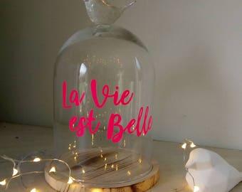 Bell glass bird life is beautiful
