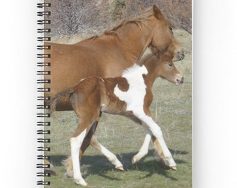 Mare & Foal Horse Notebook ~ Baby Animal Photography ~ Brown Horse Spiral Notebook ~ Girl's Diary ~ Equine Journal ~ Gift for Equestrian