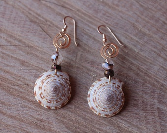 Sundial Seashell swirl earrings