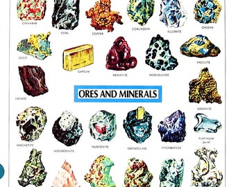 Vintage Dictionary Print - Ocean Depths Showing Typical Animal Life, Ores and Minerals - 1984 Vintage Book Page - 2 Sided - 11 x 8