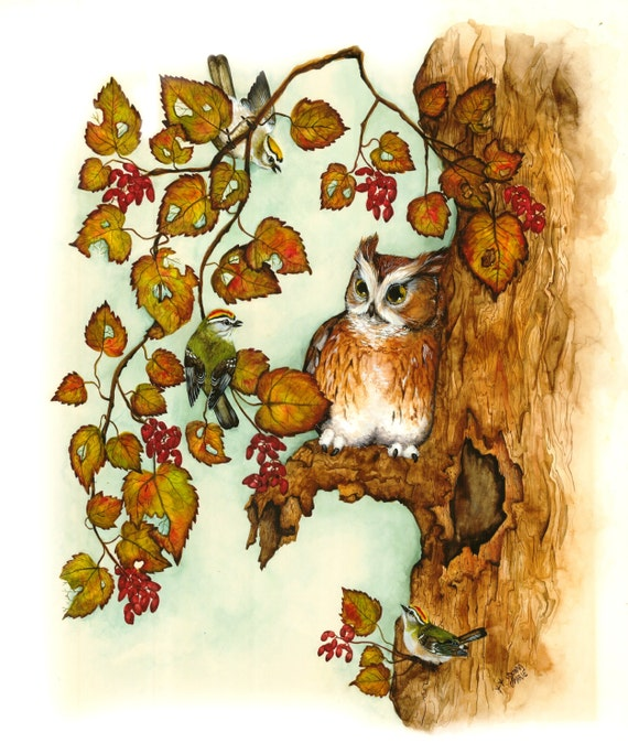 Watercolor - Owl Art -  Illustration Print