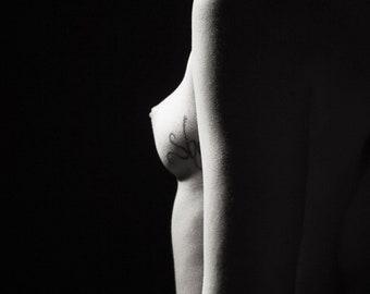 Jenna Citrus Nude No. 1519