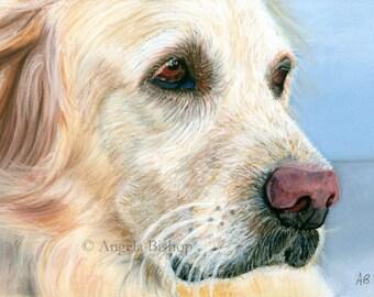Golden Retriever Painting Print, Dog Print, Pastel, Pet, My Best Friend, Reproduction, Fine Art, Nature, Realism, 8 x 10