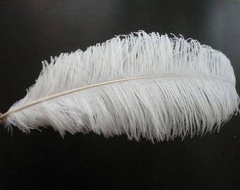 10 pieces of ostrich feathers 30-32 inches / 75-80CM white