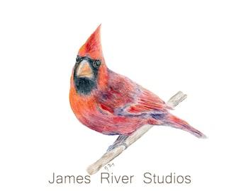 Bird Painting Bird Art Cardinal Watercolor Painting Cardinal Print. Red Bird Painting Red Cardinal Print Cardinal Wall Decor Bird Wall Art.