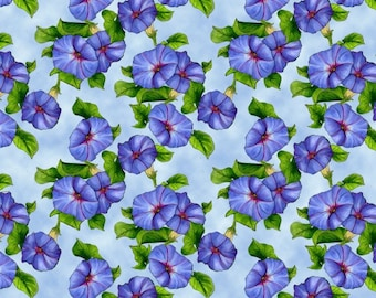 Prairie Gate 8579 11 Morning Glories, Lt. Blue by Lennie Houcoop for Blank Quilting.