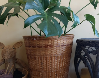 XL Lined wicker basket planter/storage