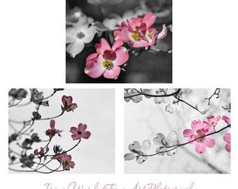 Grey pink wall art modern photography set, flower photo print set, 3 floral pictures 11x14, baby girls room nursery decor, bathroom art