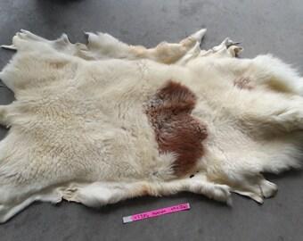 Red and Cream Spotted Sheepskin - Katahdin Hair Sheep - Lot No. 47386HP