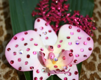 Pink Sparkling Orchid
