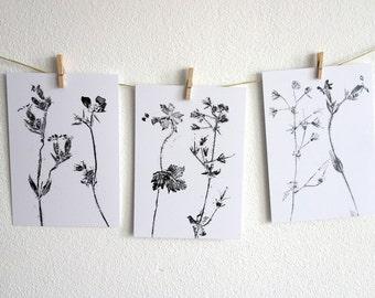 Floral Postcard, balck&white, A6