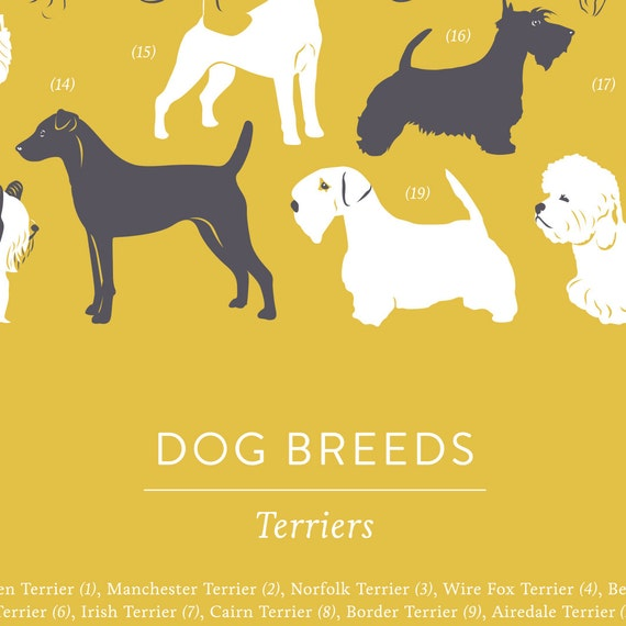 Dogs Art Print Terriers Dogs Animal Wall Art Dogs Print