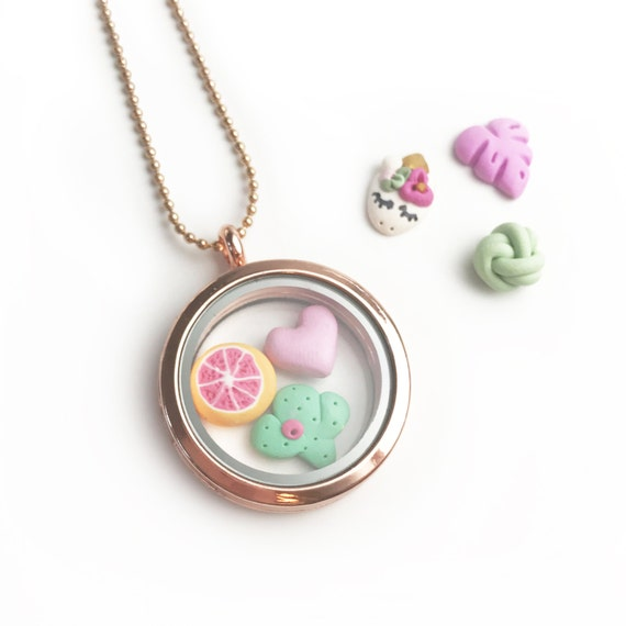 Mix and match charm Floating Locket
