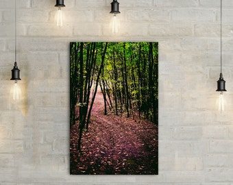 Path in the Woods Canvas Art, wall art canvas, canvas print, nature art, nature photography, nature prints