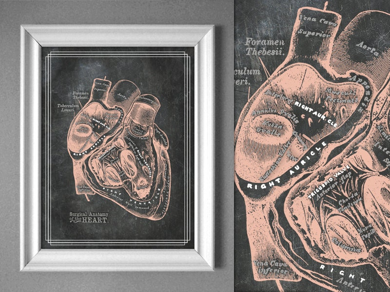 Customizable Grays Anatomy Heart Chalk Board Poster Chart