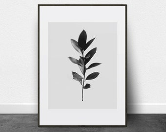 Twig, Foliage, Printable Art, Flower Prints Wall Art, Black and White Photo, Leaves Print, Minimalist Print, Plant Prints, Flower Printable