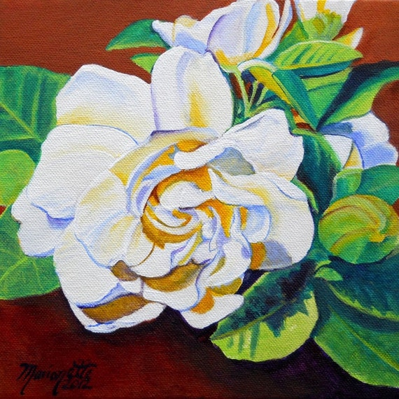Gardenia From Hilo 8x8 Art Print From Kauai Hawaii By