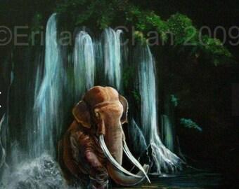 Asian Elephant Bull in Waterfall (8x8 inch Print)