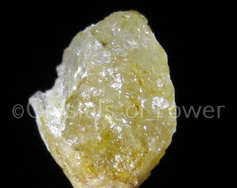 One GOLD YELLOW HERDERITE Crystal! All Natural & Genuine From Brazil! Rare Synergy 12 Stone! Most w/Terminated Crystals And Rainbows!