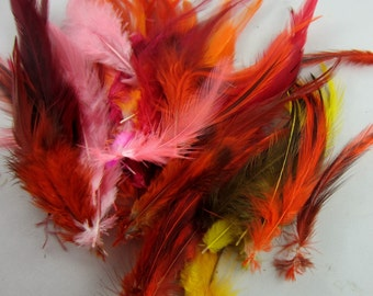 feathers orange red yellow mix 3 to 6 inches craft feathers wholesale feathers bulk feathers