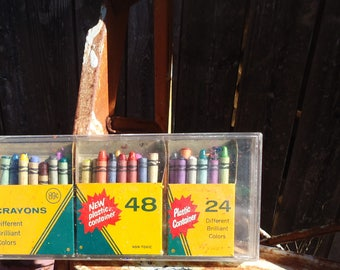 Vintage Set of Crayola Crayons in Plastic Container