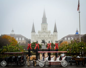Foggy Morning in NOLA