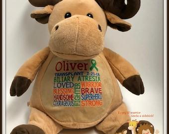 Biliary Atresia, Warrior Pet, personalized, stuffed turtle