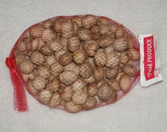 1 lb +  Hickory Nuts  for Crafting Supplies Fall Wreaths