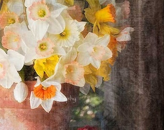 Daffodil Spring Flower Photography, floral arrangement in vase, vintage home decore print, wall art - 8x12