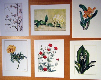 Set of 6 blank cards of Assorted Flowers_B