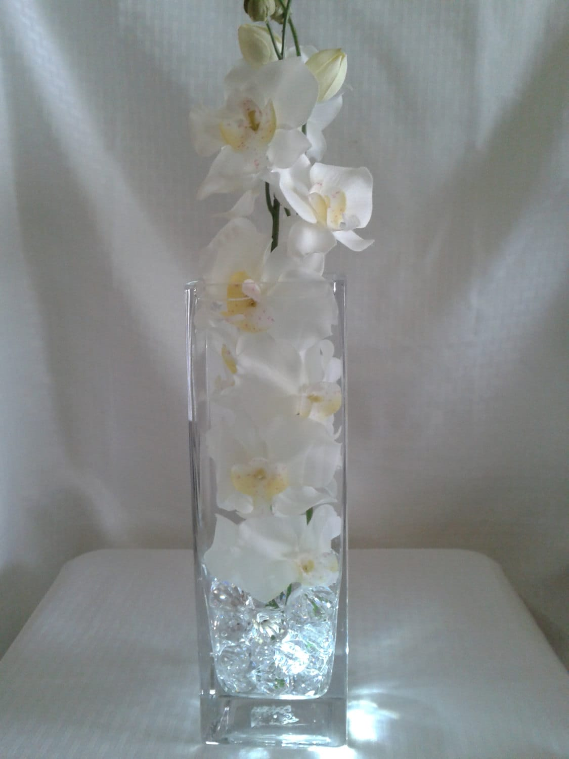 Pure white orchids in a 12 inch square vase perfect for zoom reviewsmspy