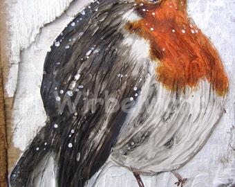 Motiv-Grußkarte Rotkehlchen (10,5 x 14,9 cm) Klappkarte ohne Text