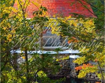 Cogshall Gazebo through Trees/Home Decor Wall Art