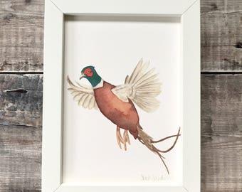 A5 Digital Print of 'In Flight' Watercolour Pheasant
