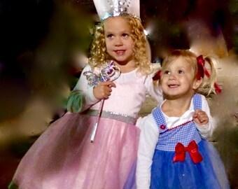 Glinda tutu dress: the good witch, pink sparkle, butterfly, silver, halloween costume, birthday, alice in wonderland, glenda, adjustable