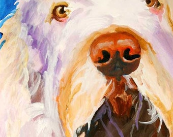 Italian Spinone Art Print of Original Acrylic Painting 8x10