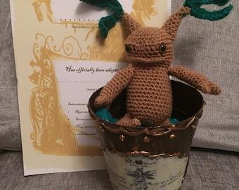 Adopt a Mandrake Root