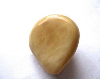 vegetable ivory tagua bead seed 65mm ecru hole 2 mm number 3