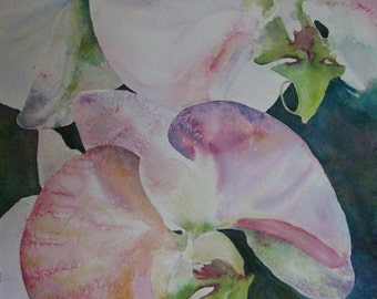 Contemporary Floral Painting (Orchids)