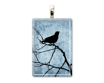 Night Bird - Glass Tile Photo Pendant - Original Photography