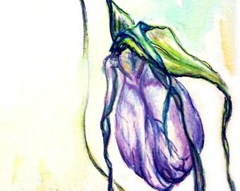Lady Slipper Flower Watercolor Print / Greeting Card