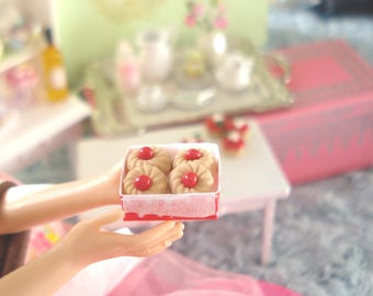 BOX cookies - miniature food for Doll House