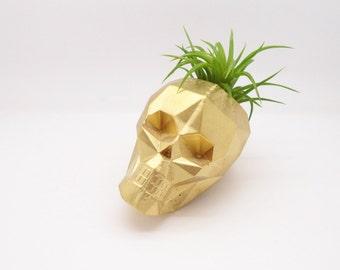 Geometric skull planter, mini air plant holder, mini skull planter