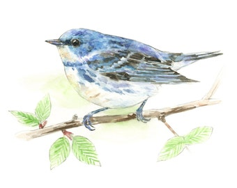 Cerulean Warbler watercolor painting - bird watercolor painting - 5x7 inch print - 0065