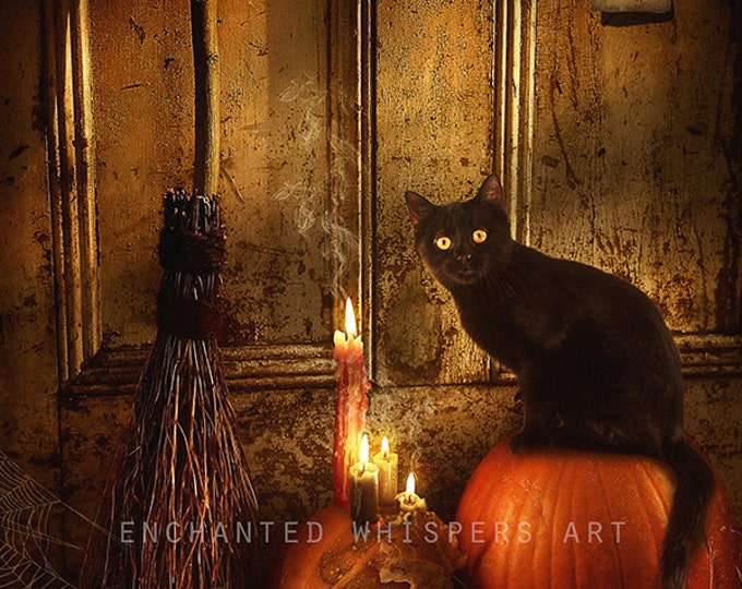 Halloween black cat with pumpkins fantasy print
